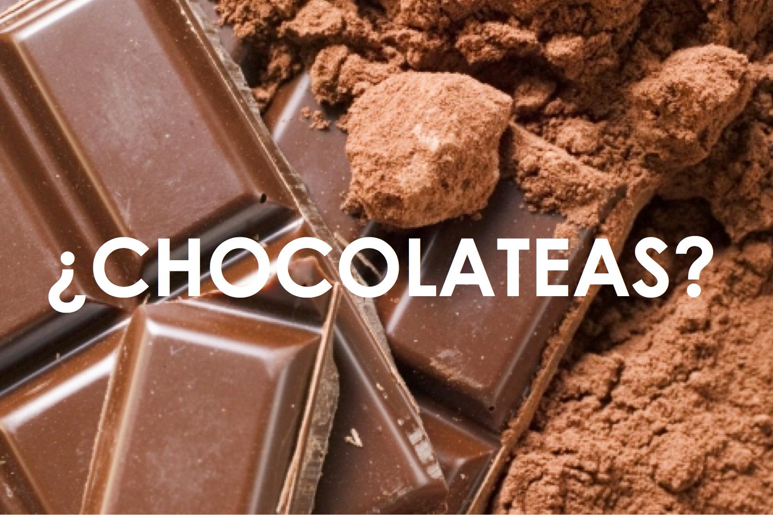 BATIDO SUSTITUTIVO CHOCOLATE HERBORA